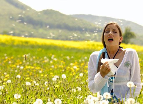 Поллиноз (сенная лихорадка) - аллергия на пыльцу!