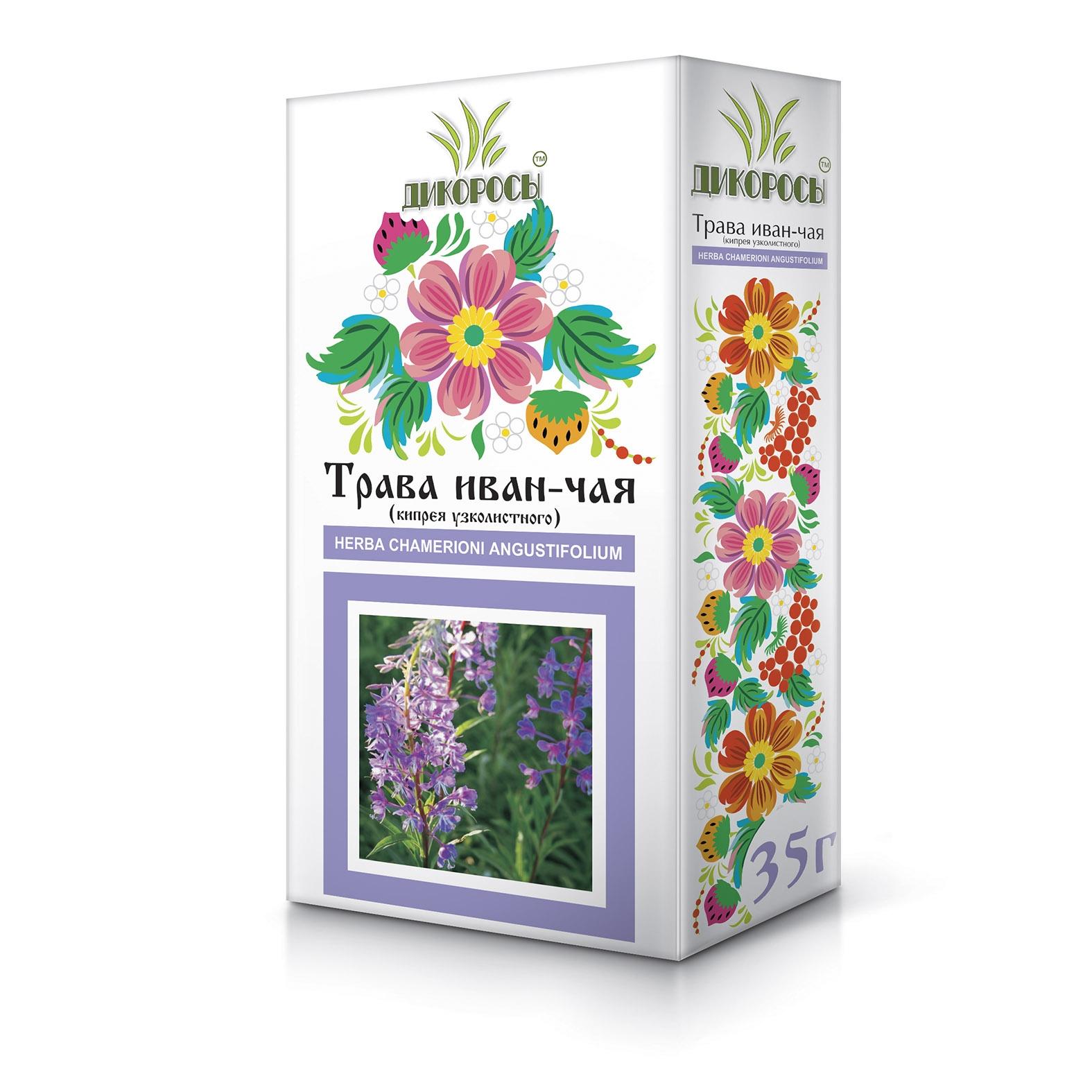 Трава Иван-чая (кипрея): применение, лечебные и полезные свойства, противопоказания