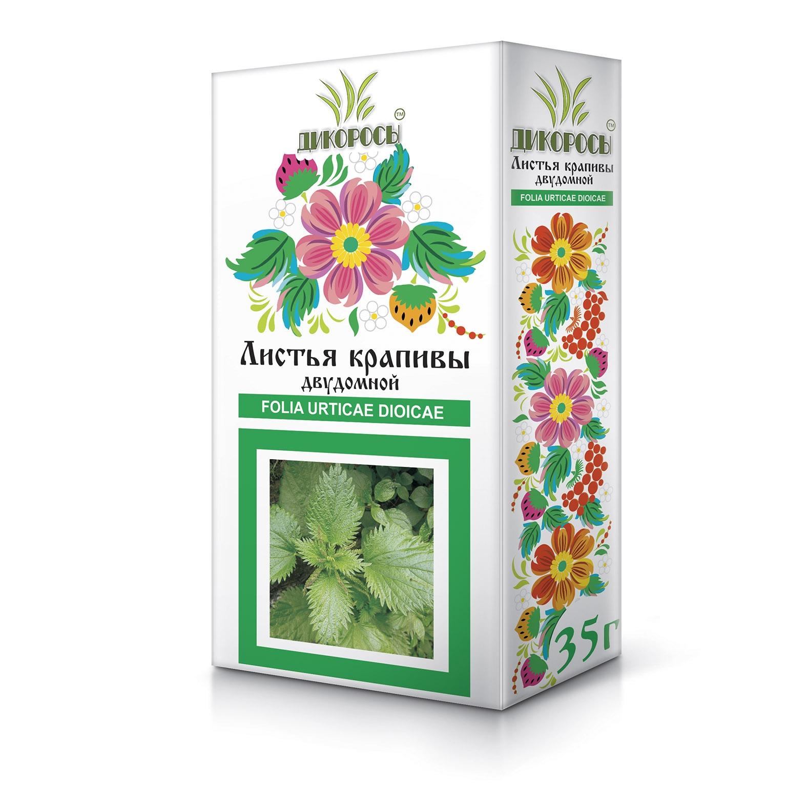 Листья крапивы двудомной: применение, лечебные свойства и противопоказания