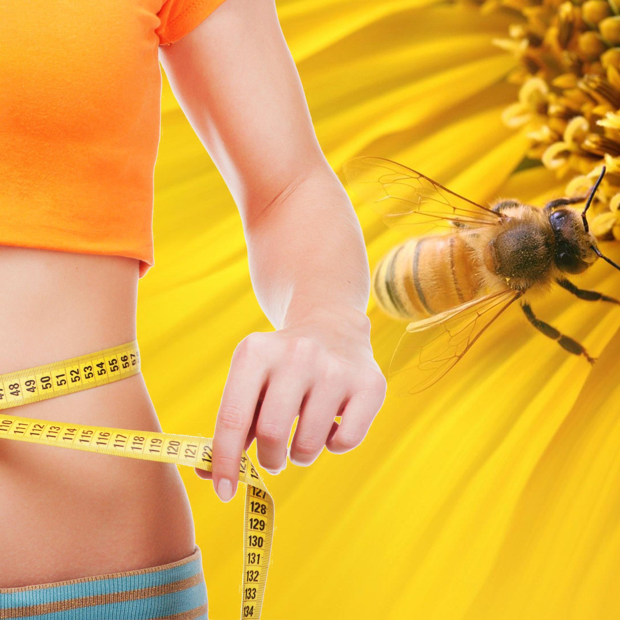 Апитонус П помогает при ожирении