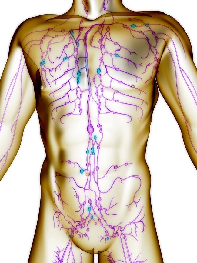 Зачем нужно очищать лимфатическую систему?