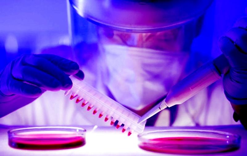 Открытие кубинских ученых: рак кожи можно вылечить