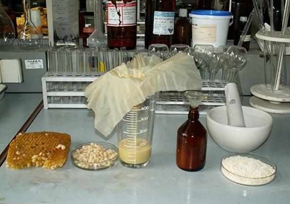 Свойства трутневого расплода или трутневого молочка