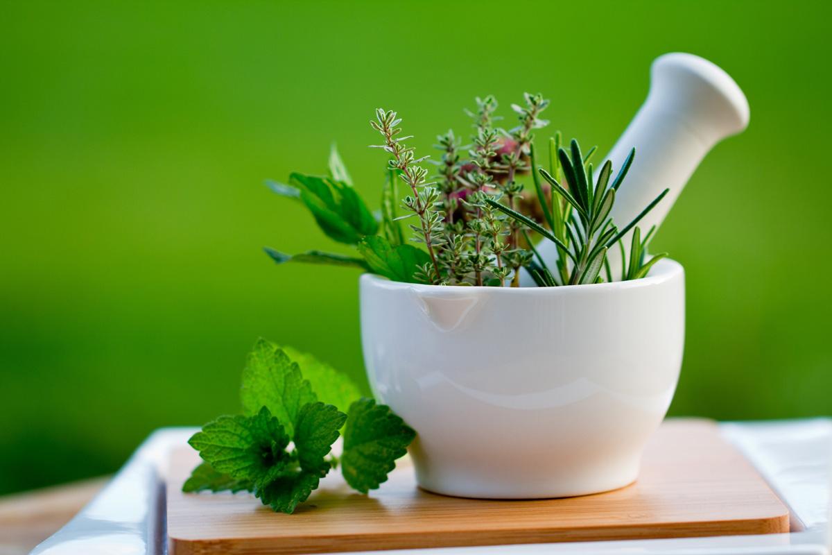 Фитотерапия как метод лечения и оздоровления