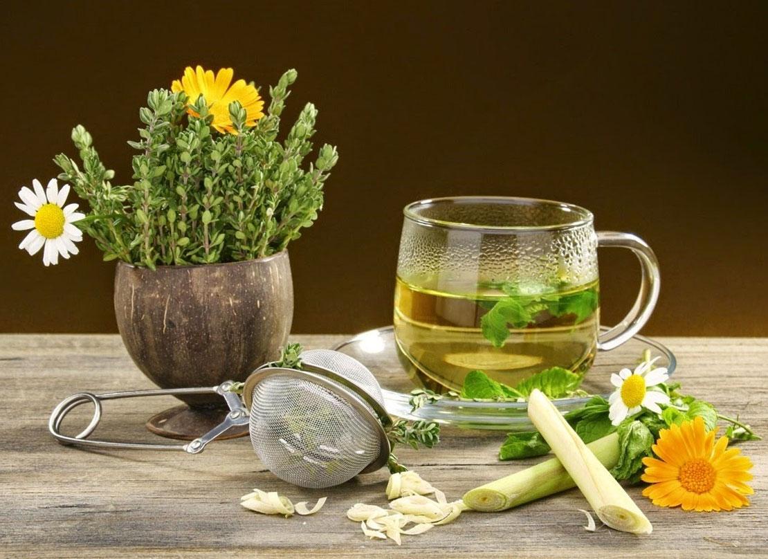 Фитотерапия простудных заболеваний. Фитонциды, цинк и эфирные масла