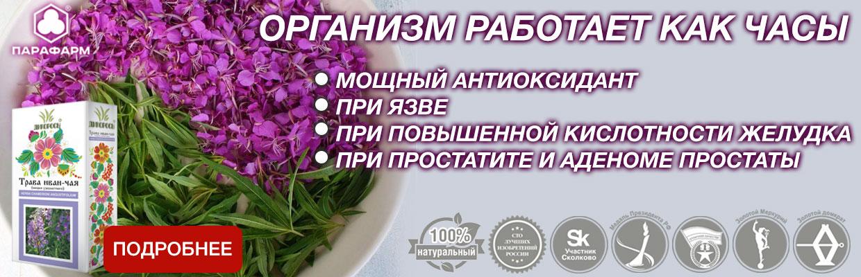 Иван-чай-трава