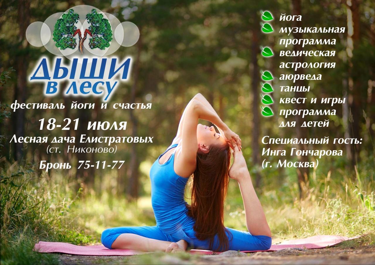festival-yogi