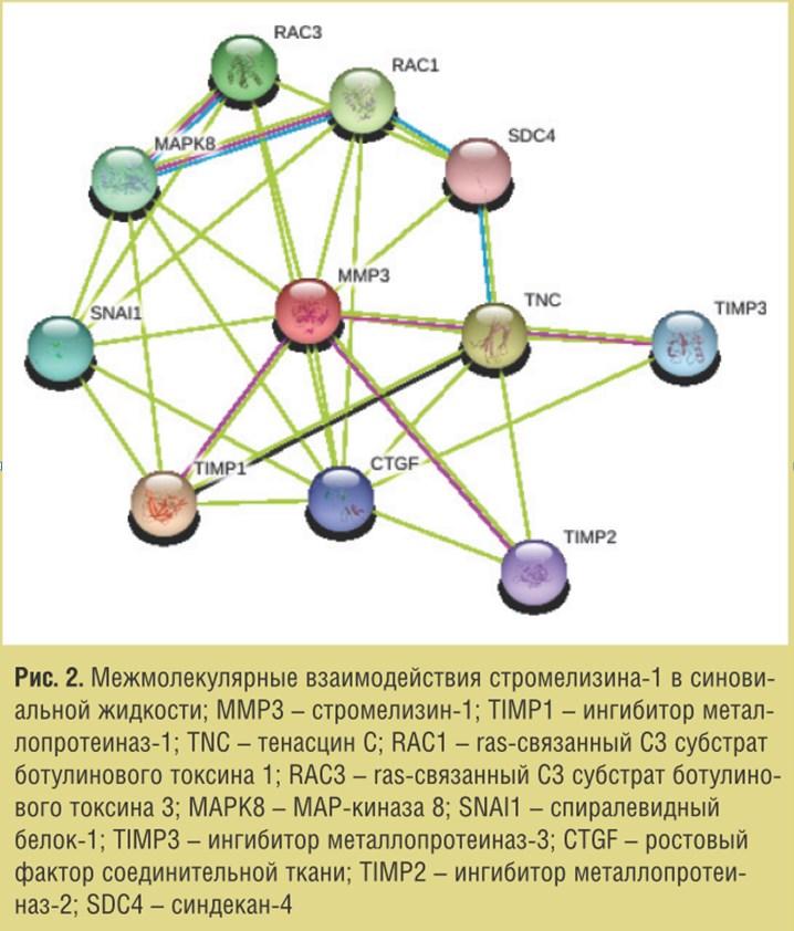 Молекулярные механизмы эффективности препарата Остеомед Форте при псориатической артропатии
