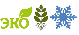 Преимущества витаминов для сна: экологически чистое сырье, цельные растения, криообработка