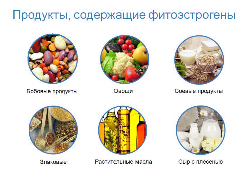 продукты содержащие фитоэстрогены