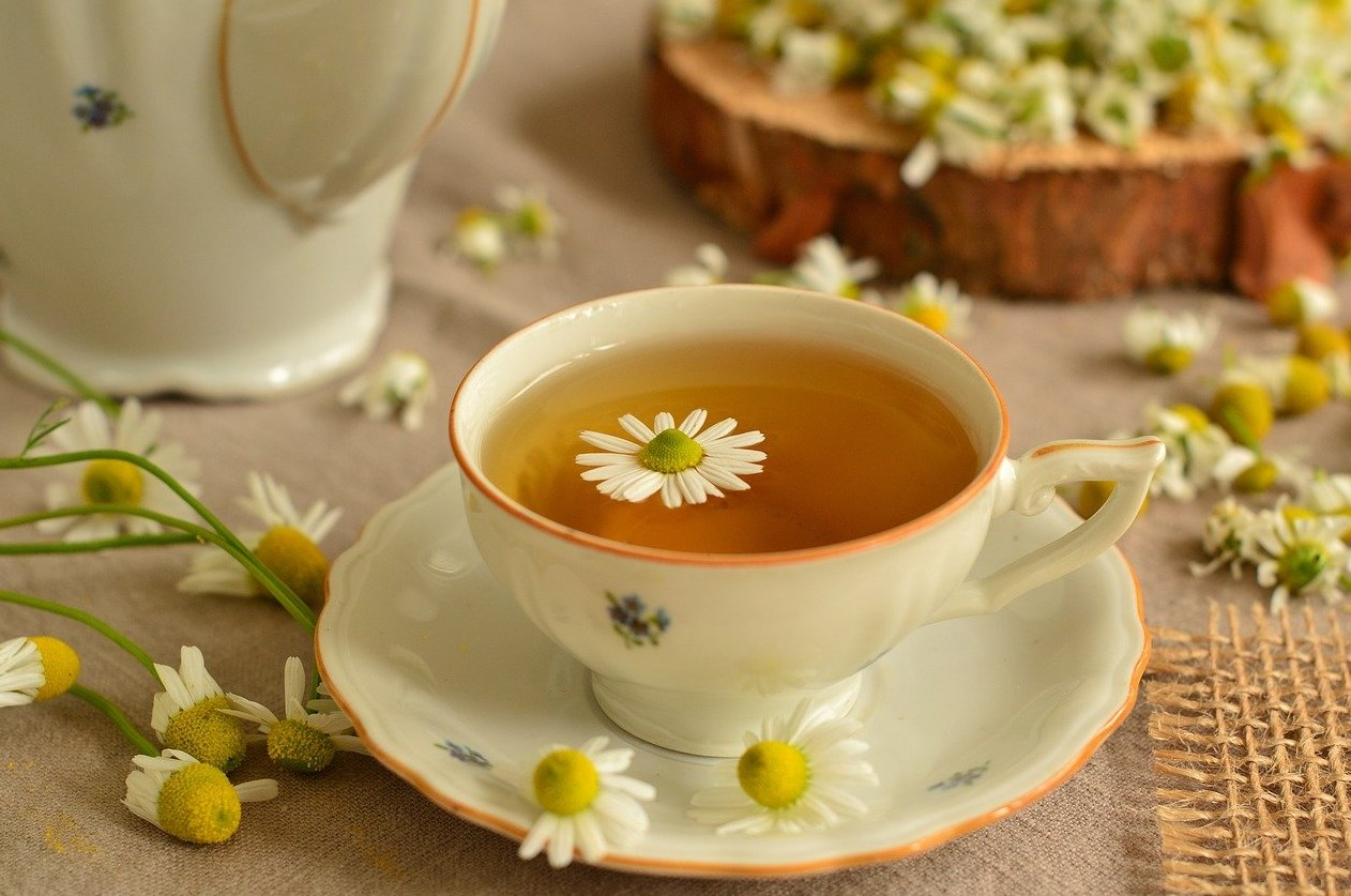 чай из ромашки при гастрите