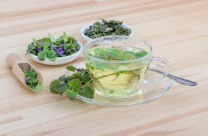 Из каких трав можно заваривать чай